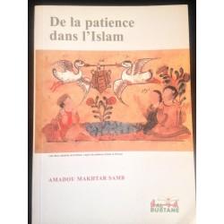 De la patience dans l'Islam...
