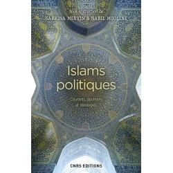 Islams politiques....